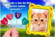 7018-Luz-do-sol