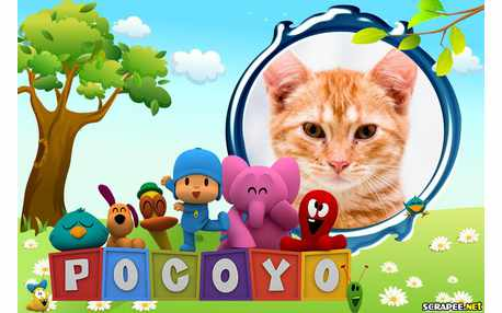Moldura - Galera Do Pocoyo