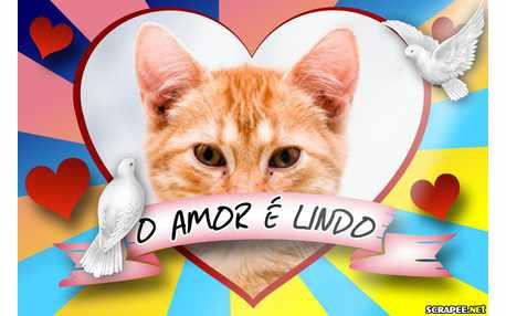 Moldura - O Amor E Lindo Especial Dia Dos Namorados