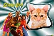 7039-Scooby-Doo-Filme