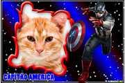 7035-Capitao-America