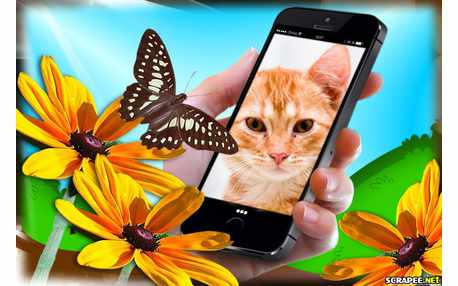 Photo frame with butterfly and iPhone