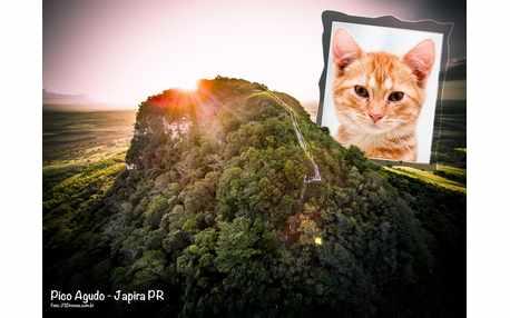Moldura - Pico Agudo Japira Pr