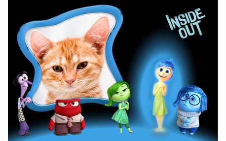 Moldura - Inside Out Movie