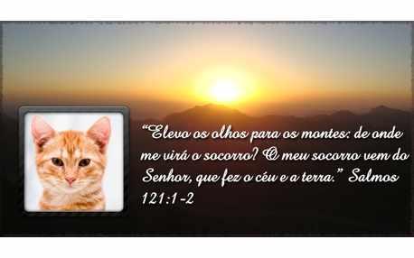 Moldura - Salmo 121 Para Facebook