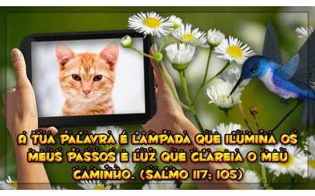 Moldura - Salmo 117 Verso 105 Recado Bablico