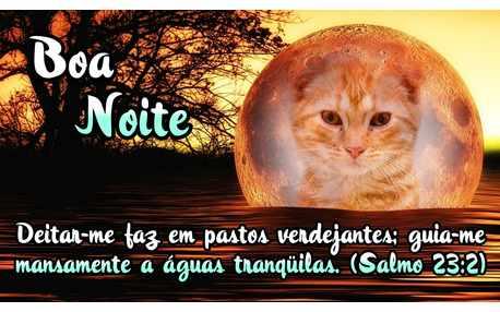 Moldura - Boa Noite Salmo 23