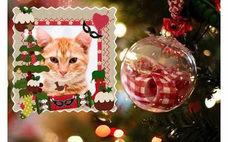 Moldura - Moldura Comemorativa De Natal