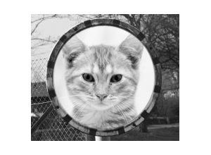 Moldura - Street Mirror