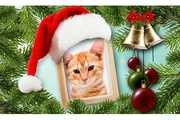 Feliz-Natal-Montagem-Gorro-de-Natal