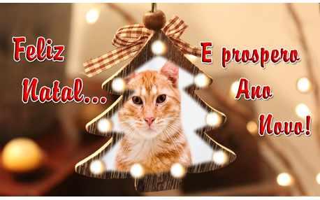Moldura - Foto Na Arvore De Natal E Prospero Ano Novo