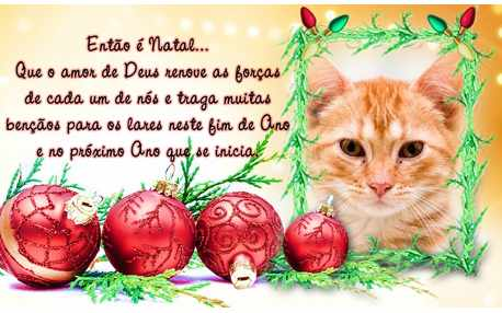 Moldura - Cartao Mensagem De Natal