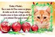 CartAo-Mensagem-de-Natal
