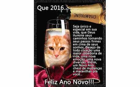 Moldura - Mensagem De Ano Novo 2016 Com Foto