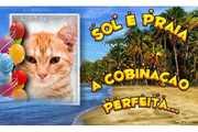 Ferias-Sol-e-Praia