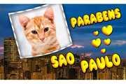 Parabens-Sao-Paulo-462-Anos