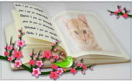 Moldura - Foto No Livro Com Flores