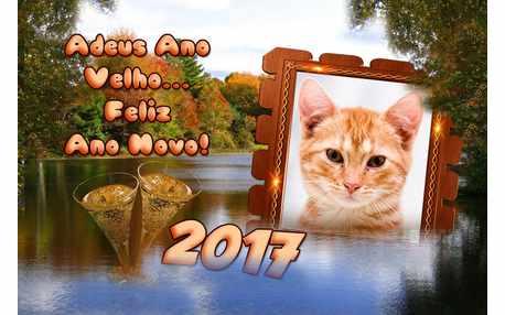 Moldura - Feliz Ano Novo 2017
