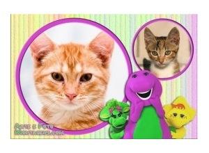 Moldura para duas Fotos - Barney