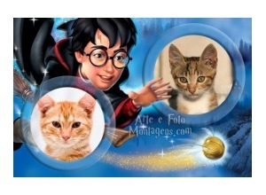 Moldura duas fotos Harry Potter Nimbus