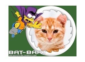 Moldura - Bat Bart