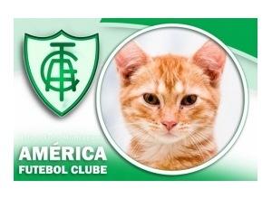 America-futebol-clube