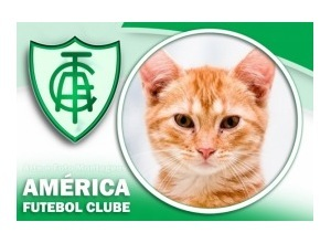 Moldura - America Futebol Clube