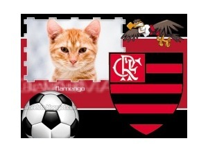 Moldura - Flamengo