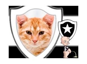 Moldura - Botafogo