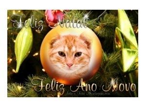 Moldura - Feliz Natal E Ano Novo