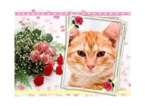 Moldura - Bouquet De Rosas
