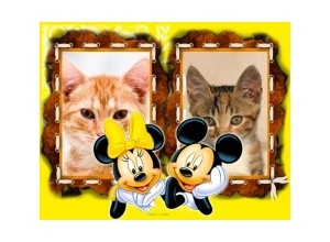 Moldura para duas Fotos - Minie E Mickey
