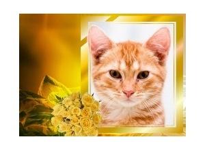 Moldura - Bouquet Amarelo