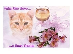 Moldura - Feliz Ano Novo Boas Festas