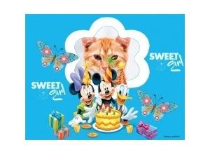 Moldura - Aniversario Disney