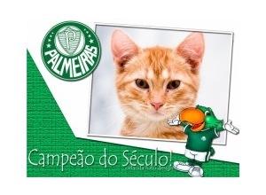Moldura - Palmeiras Campeao