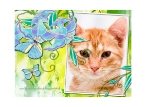 Moldura - Flores Azuis E Borboleta