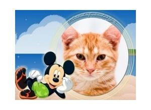 Mickey-Verao