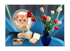 MolduraFoto no Espelho