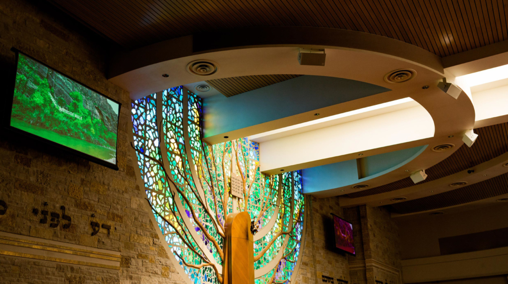 Congregation Shalom Zero-G