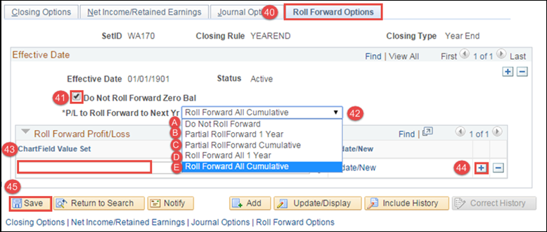 Roll  Forward Options tab