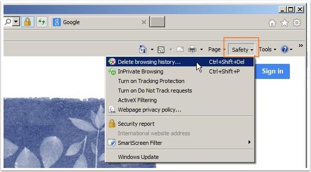 Delete browsing history option