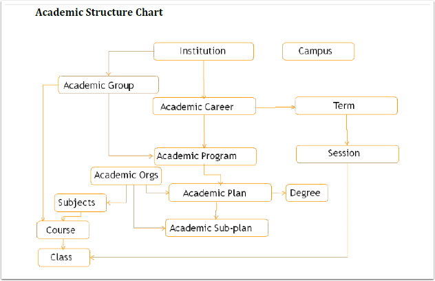 Academic Structure flow chart