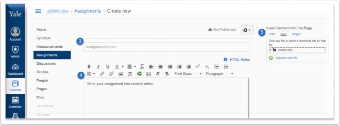 Name your assignment, write any information within the content editor, and insert content into the page.