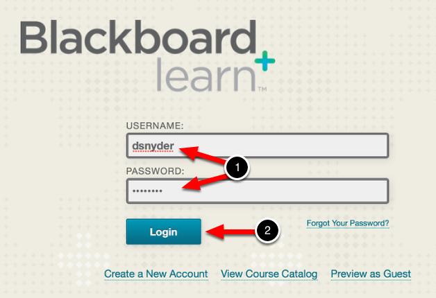 Step 1: Log In to Blackboard