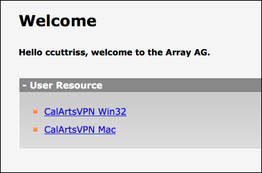 Download the VPN Installer