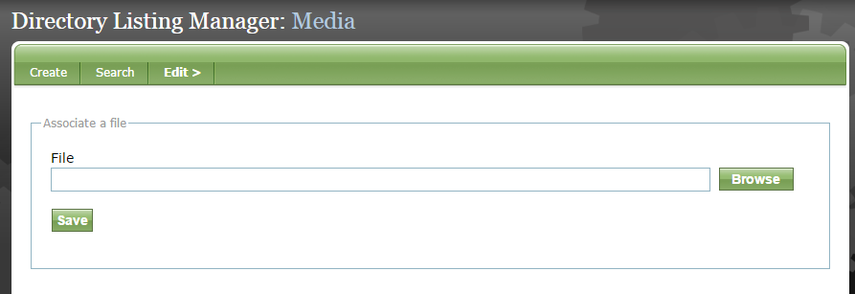 Click on Browse to select a file from your Media Manager.