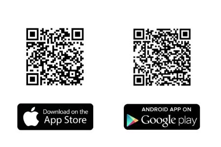 TEAMWORK App herunterladen