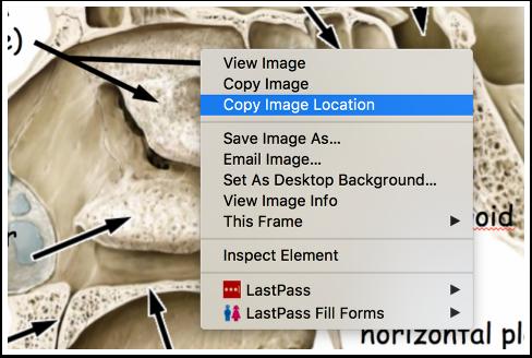 Image location context menu