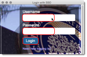 Login with SSO page